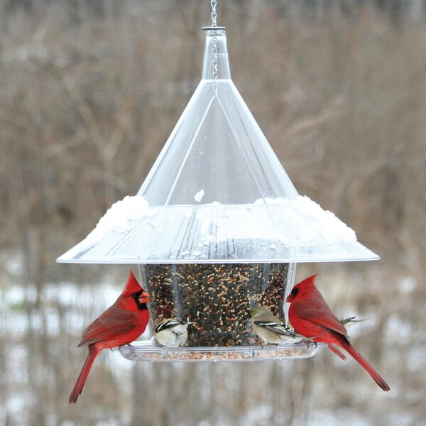 Sky Cafe Hopper Bird Feeder by Arundale