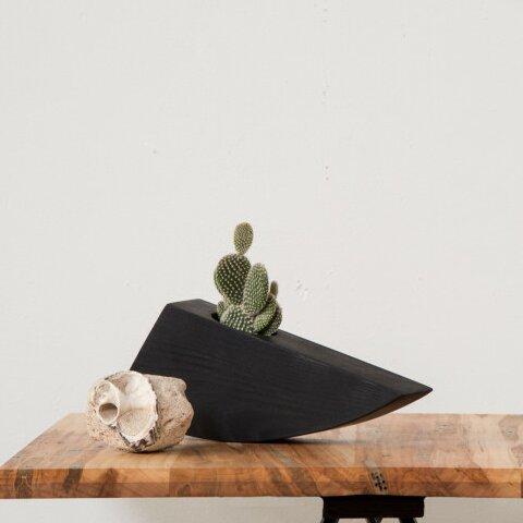 Kelly Succulent Ash Pot Planter by Boyce Studio