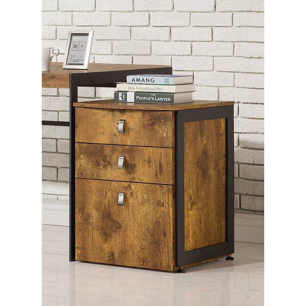Natarajan 3-Drawer Vertical Filing Cabinet by Union Rustic