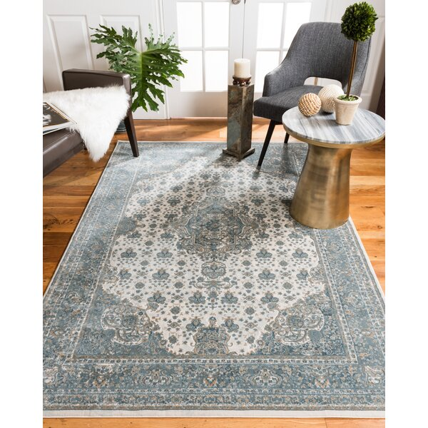 Solara Blue Area Rug by Natural Area Rugs