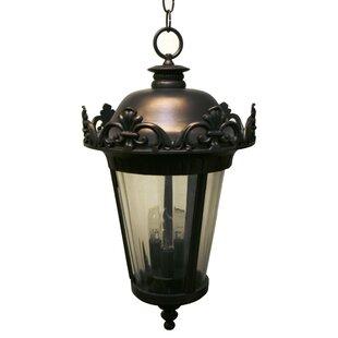 Petrey 3-Light Outdoor Hanging Lantern By Alcott Hill Outdoor Lighting