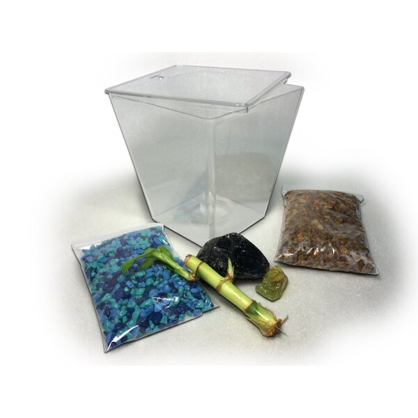 Nutmeg Aquarium Kit by Tucker Murphy Pet
