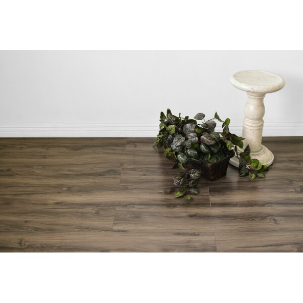 Kayson 8 x 48 x 12mm Oak Laminate Flooring in Brown by Serradon
