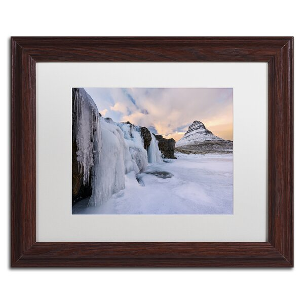 Frozen Canopy by Michael Blanchette Framed Photographic Print by Trademark Fine Art