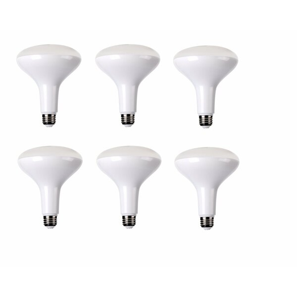 15W E26/Medium LED Light Bulb (Set of 6) by Elegant Lighting