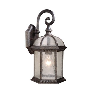 Affordable Brownfield 1-Light Outdoor Wall Lantern By Fleur De Lis Living