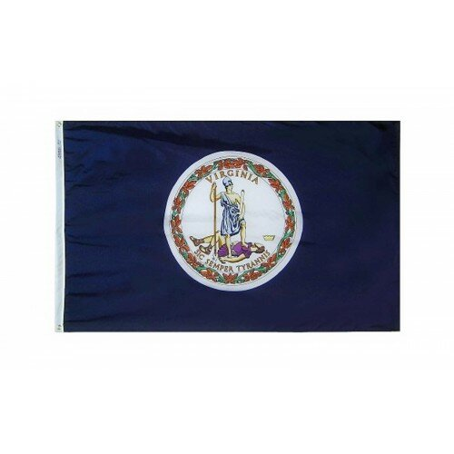 Virginia Glo Traditional Flag by NeoPlex