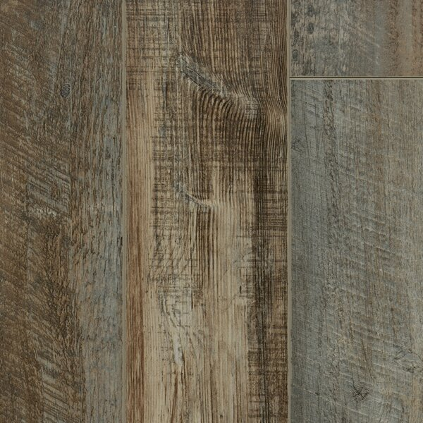 Signature 6 x 48 x 12mm Walnut Laminate Flooring in Gunstock by Dyno Exchange