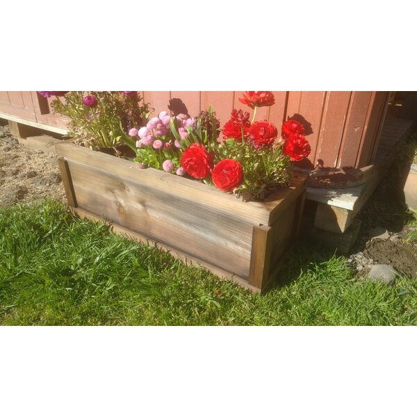 Hodder Home and Garden Redwood Planter Box by Charlton Home