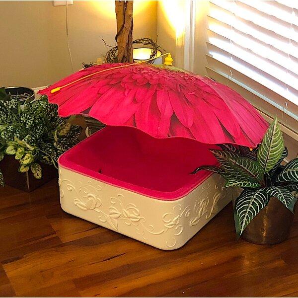 Duke Bolster Pet Bed with Umbrella by Tucker Murphy Pet