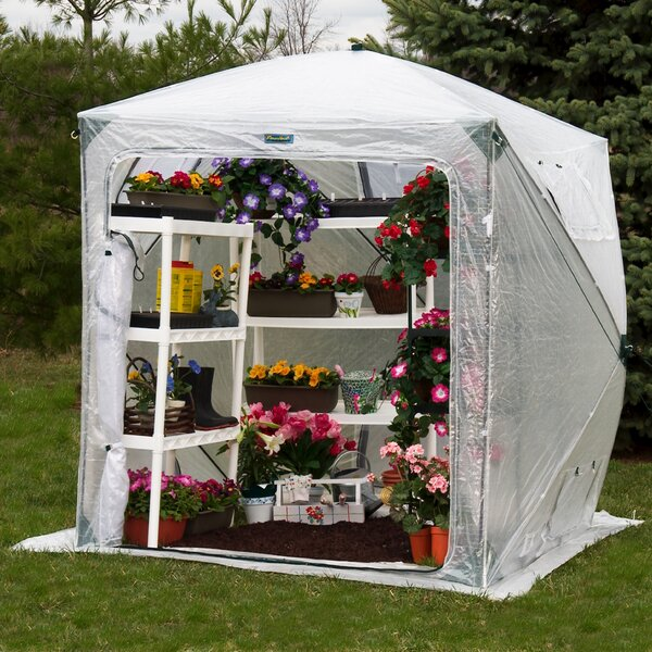 Orchidhouse 6 Ft. W x 6 Ft. D Greenhouse by Flowerhouse