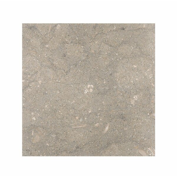 Sea Grass 18 x 18 Limestone Field Tile in Gray by Parvatile