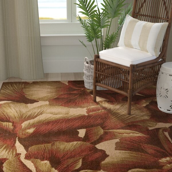 Hudson Brown/Tan Area Rug by Bay Isle Home