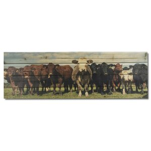 'Cow Herd' Photographic Print on Wood by Gallery 57