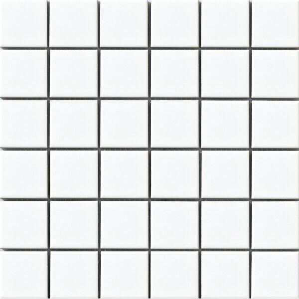 Vintage 2 x 2 Porcelain Mosaic Tile in White by Walkon Tile