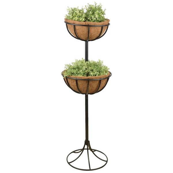 Carbon Steel Basket Double Plant Stand by EsschertDesign
