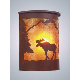 Best Reviews Moose 1-Light Outdoor Flush Mount By Steel Partners