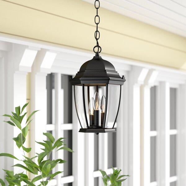 Drumkeeran 3-Light Outdoor Hanging Lantern by Astoria Grand
