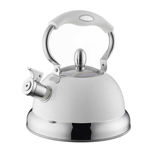 2.5 L Stainless Steel Whistling Stove Top Kettle Typhoon