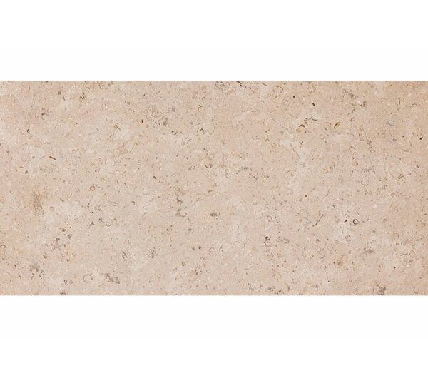 Dijon 12 x 24 Stone Field Tile in Honed Beige by Parvatile