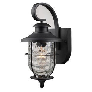 Affordable Liadan 1-Light Outdoor Wall Lantern By Longshore Tides