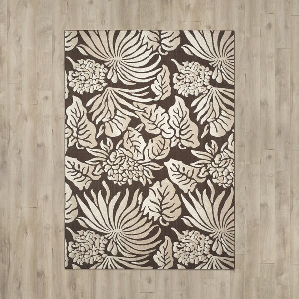 Patricia Brown Indoor / Outdoor Area Rug by Beachcrest Home
