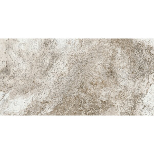 Baroque 12 x 24 Porcelain Field Tile in Brown by Parvatile