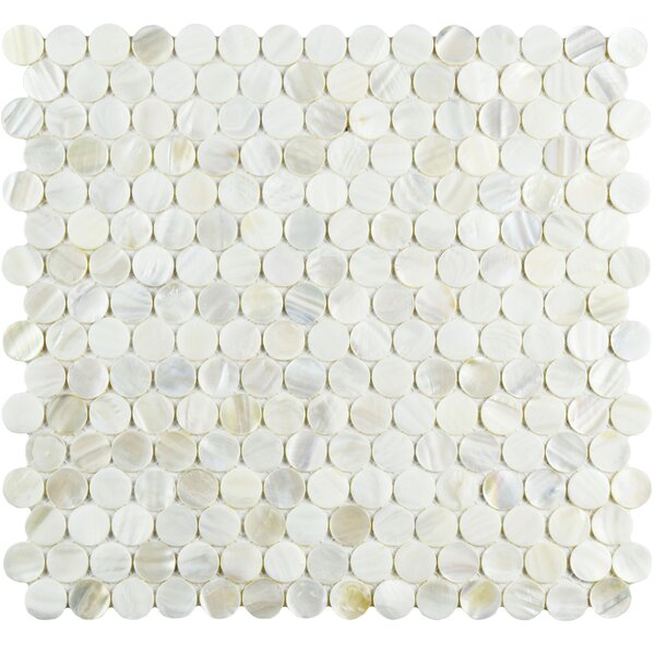 Shore 0.75 x 0.75 Seashell Mosaic Tile in White by EliteTile