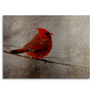 'Cardinal in Winter' by Lois Bryan Painting Print on Metal by Trademark Fine Art
