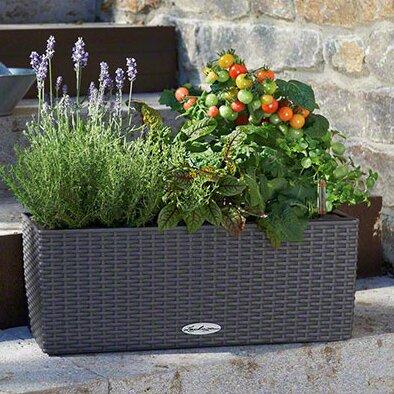 Balconera Plastic Self-Watering Planter Box