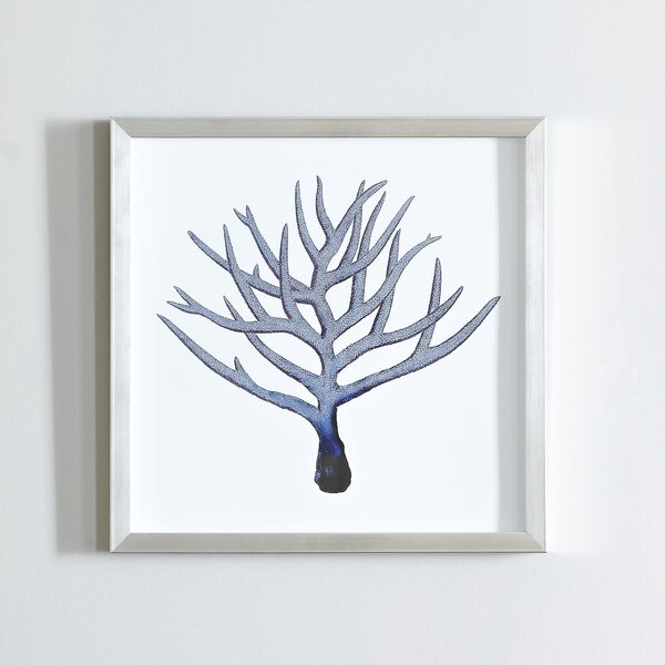 Indigo Coral Shadow Box IV by Birch Lane™