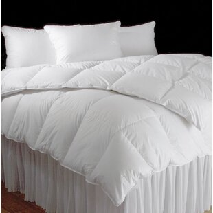 Regency Hungarian Heavyweight Down Comforter ByDownTown Company