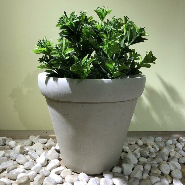 Northfleet Round Rim Pot Planter by Charlton Home