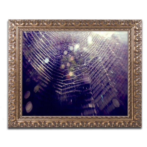 Purple Lullaby by Beata Czyzowska Young Ornate Framed Photographic Print by Trademark Fine Art