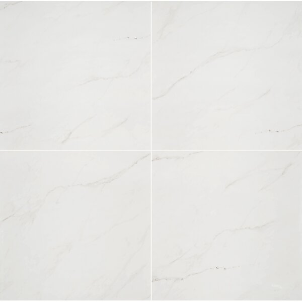 Aria 24 x 24 Porcelain Tile in Ice by MSI