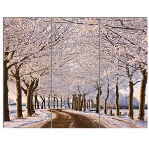 'Trees and Road in White Winter' 3 Piece Photographic Print on Canvas Set by Design Art