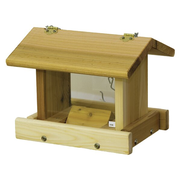 Hanging Hopper Bird Feeder with Chain by Stovall