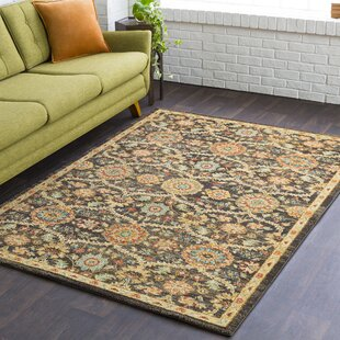 Burnt Orange And Brown Rug Wayfair