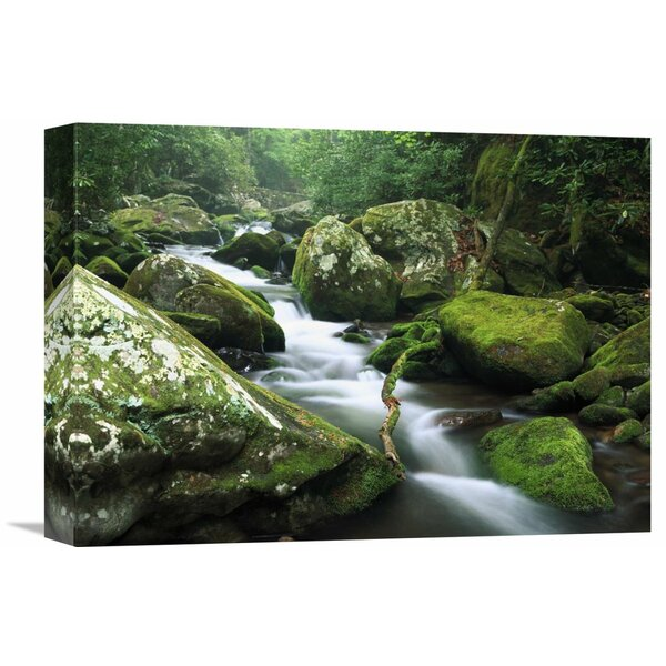 Nature Photographs Roaring Fork River Great Smoky Mountains National Park Tennessee by Tim Fitzharris Photographic Print on Wrapped Canvas by Global Gallery