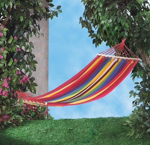 Derry Stripes Single Tree Hammock by Bay Isle Home