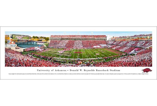 NCAA Arkansas Razorback Football Stripe Photographic Print by Blakeway Worldwide Panoramas, Inc