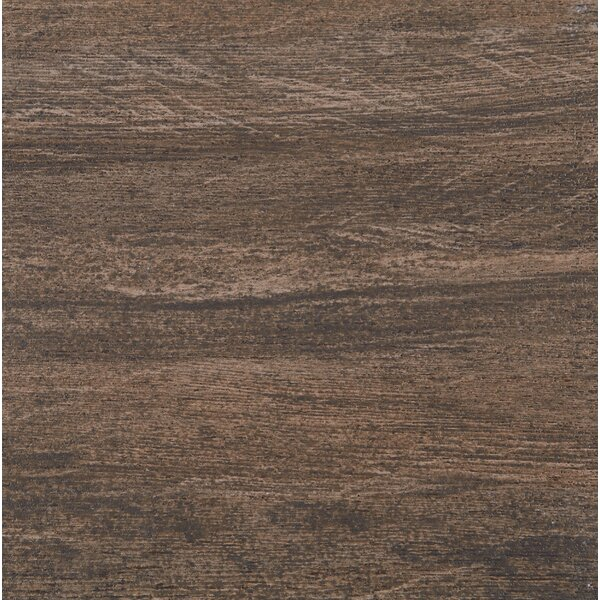 Marin 12 x 12 Porcelain Wood Look Tile in Mainland by Itona Tile
