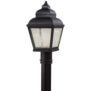 Big Save Dorchester Outdoor 1-Light Lantern Head By Darby Home Co