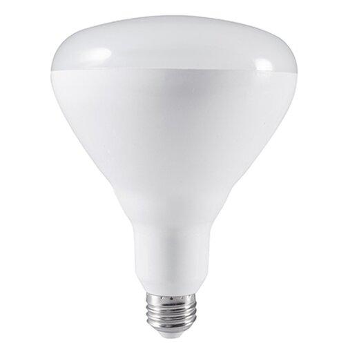 20W E26 Medium Base LED Light Bulb (Set of 2) by Bulbrite Industries