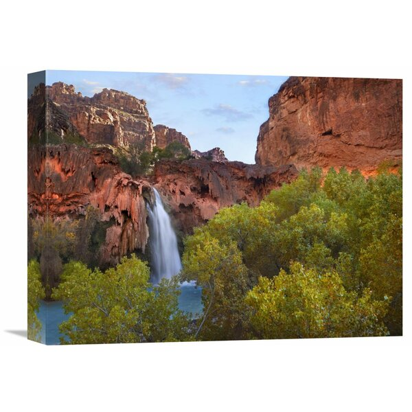 Nature Photographs Havasu Falls, Grand Canyon, Arizona by Tim Fitzharris Photographic Print on Canvas by Global Gallery