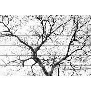 'Black Branches' by Parvez Taj Painting Print on White Wood by Parvez Taj