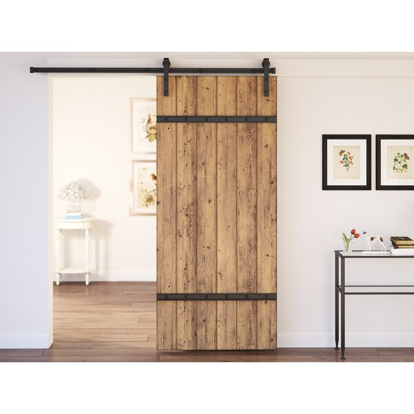 Celeste 1 Panel Interior Barn Door by August Grove