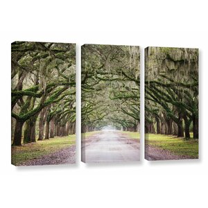 'Oak Trees with Spanish Moss in Savanna Georgia' by Cody York 3 Piece Photographic Print on Wrapped Canvas Set by Loon Peak