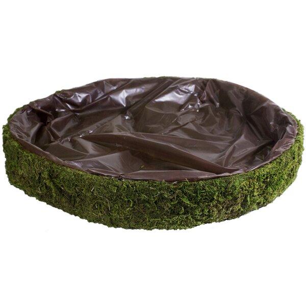 Fairy Garden Basket Pot Planter by SuperMoss™