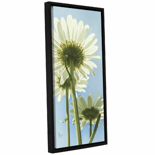 'Underside Of Happiness'  Framed Photographic Print On Canvas by Wrought Studio